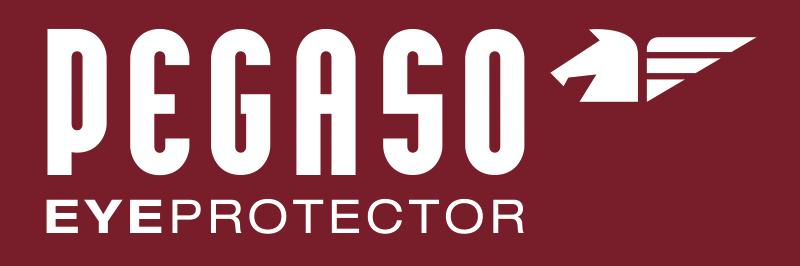 Pegaso Safety